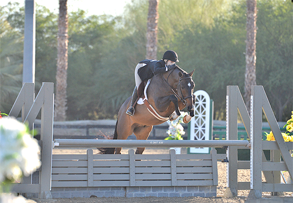 willow brook stables hannah goodson-cutt and ironman