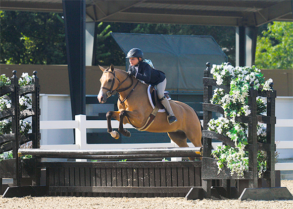 willow brook stables tessa buchanan and rose gold
