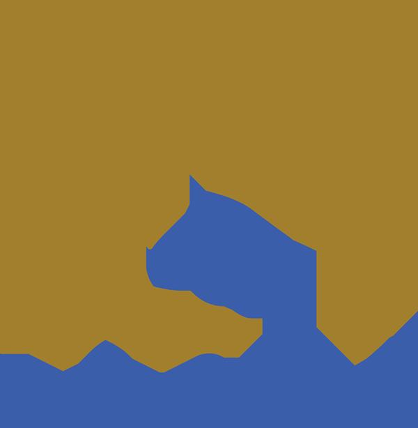 EqSol Logo